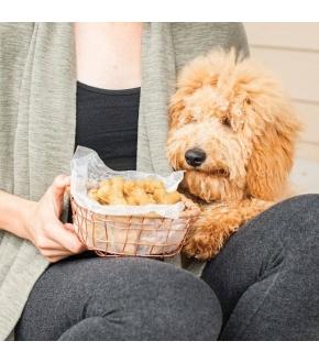 Forma Antiaderente Puppy Love - Nordic Ware