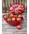 Cocotte Mini de Cerâmica Tomate - Staub