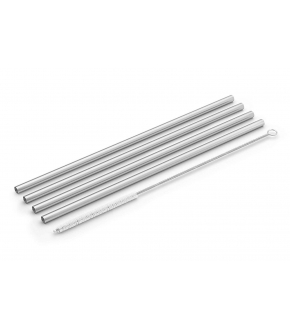 Conjunto de 4 Palhinhas de Aço Inoxidável com Escovilhão - Zack